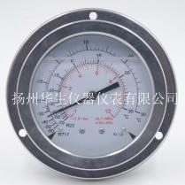 100全不锈钢耐震压力表制冷表