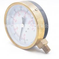 100径向电泳铜罩压力表